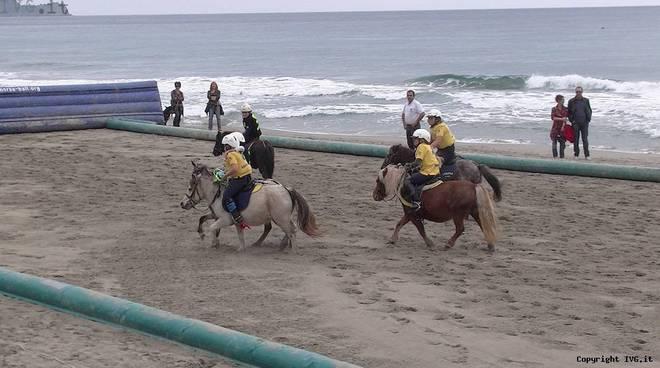 Cavalli spiaggia Alassio