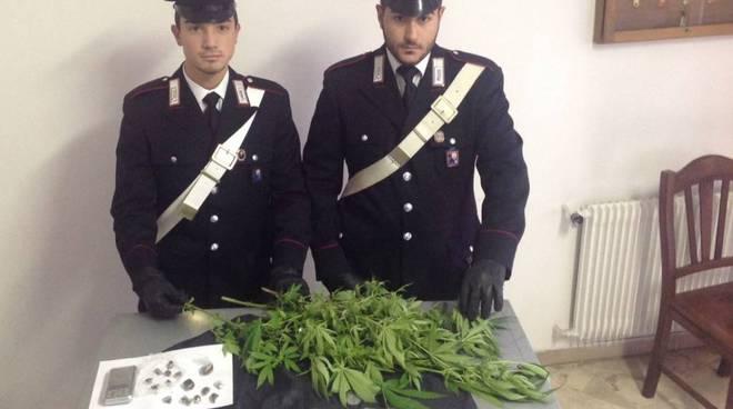 piantagione marijuana cairo