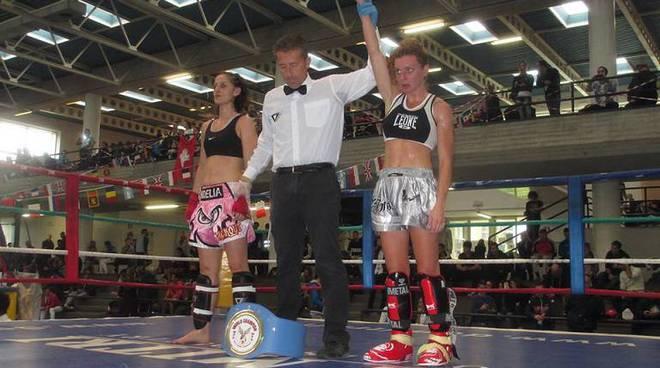 WFC di kick boxing
