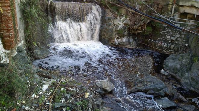 acqua marrone rio cassinelle