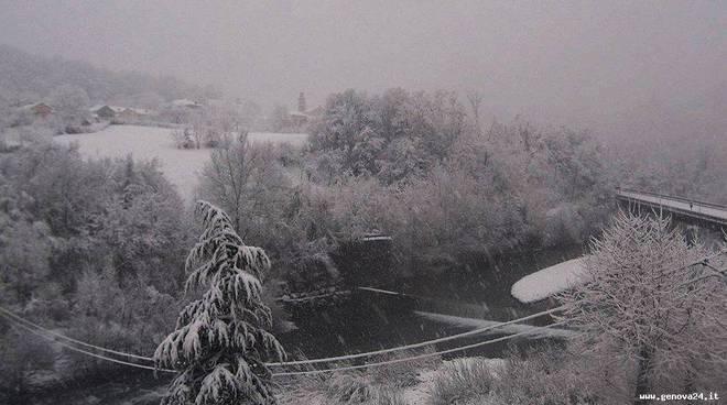 allerta neve gennaio 2014
