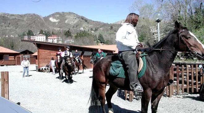 maneggio, cavallo, cavalli parco antola