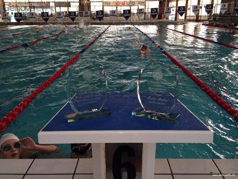 Pra' piscina delfini acquacenter