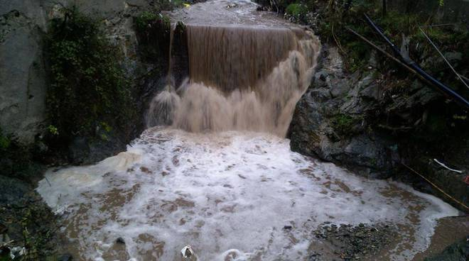 rio cassinelle percorlato 29 gennaio 2014