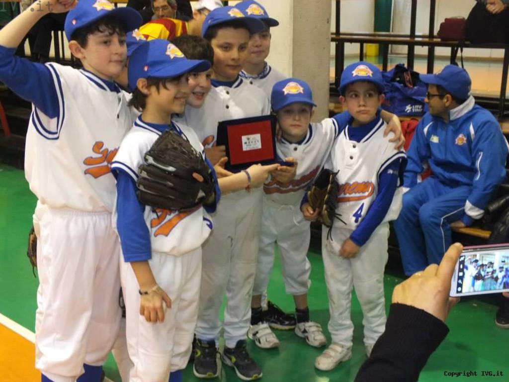 Winter Indoor Baseball League