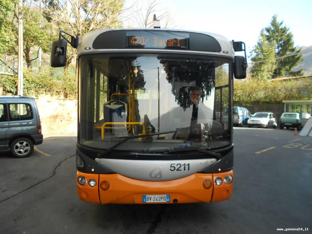 470 bus collinari