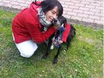 paco cane maltrattato