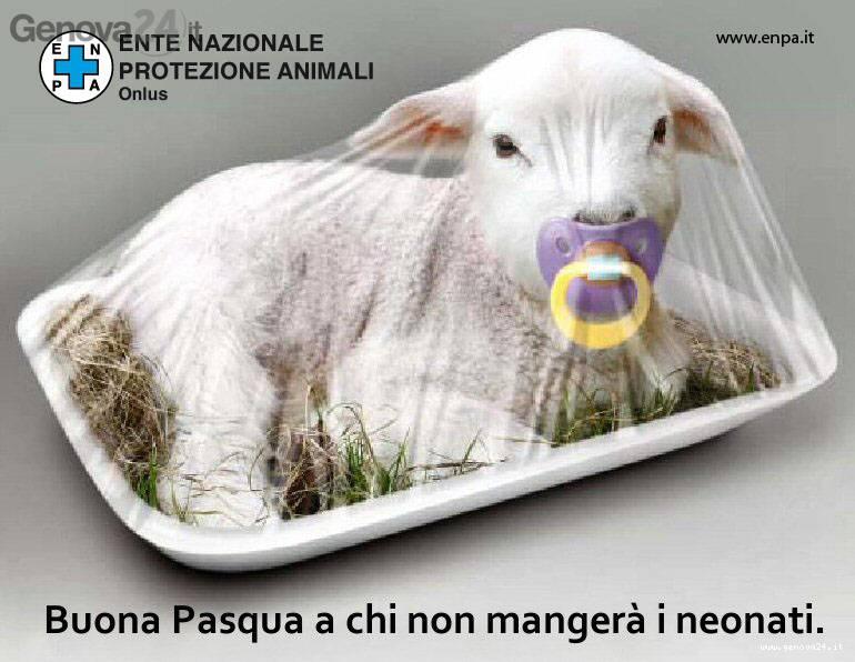 agnello enpa pasqua