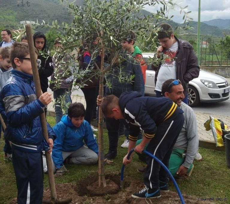 eco school 2