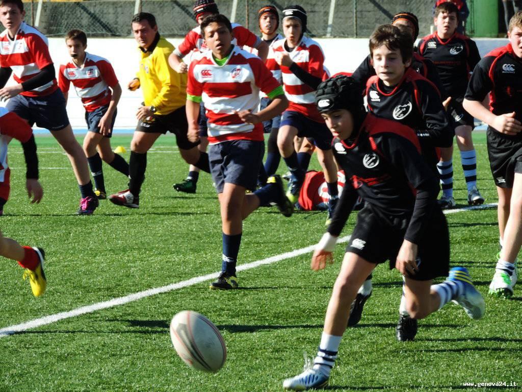 rugby under 14