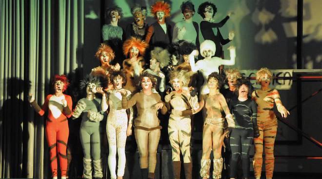nati da un sogno teatro musical storie di gatti