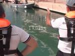 Loano delfino spiaggiato