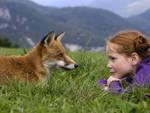 La volpe e la bambina di Luc Jacquet