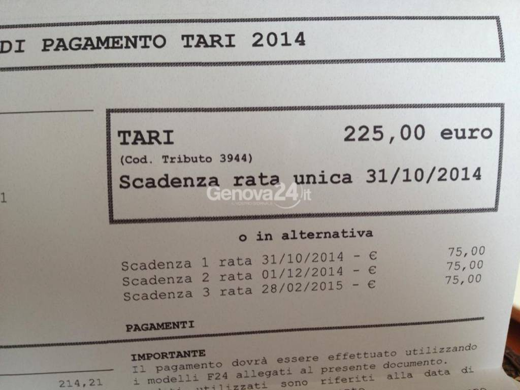tari 2014