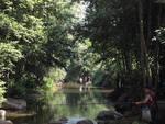torrente Maremola Tovo