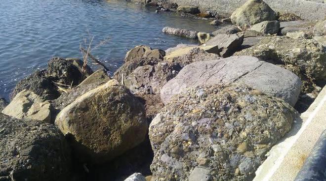 passeggiata a mare di rapallo