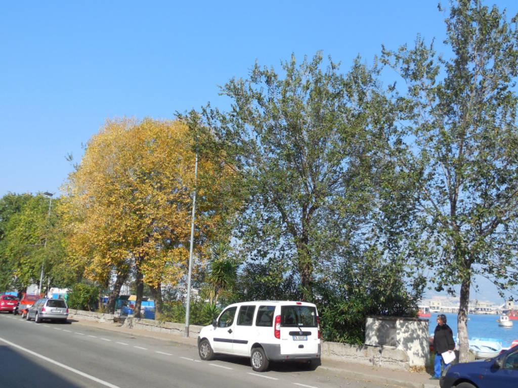 alberi Vado protesta