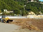 andora legname spiagge