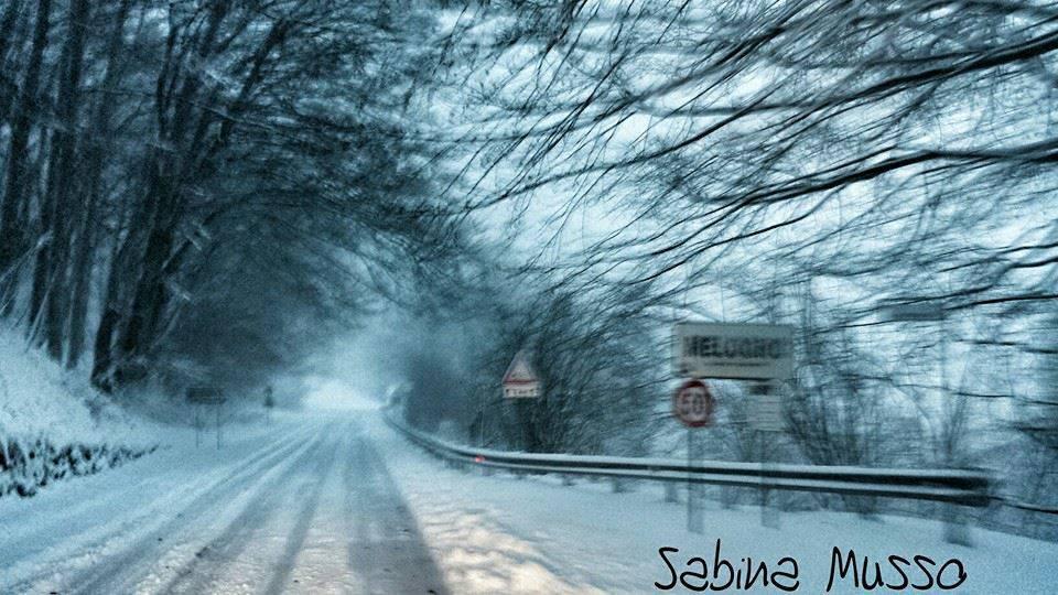 melogno neve