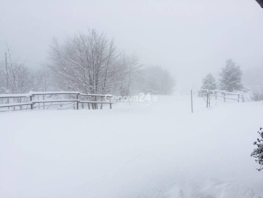 neve sul Faiallo