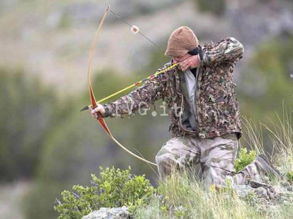 caccia arco