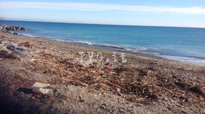 legna spiagge albenga