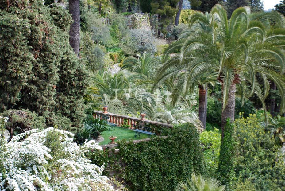Torna la primavera ad alassio riaprono i giardini di for Giardini villa della pergola
