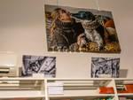 Mostra fotografica canile Savona
