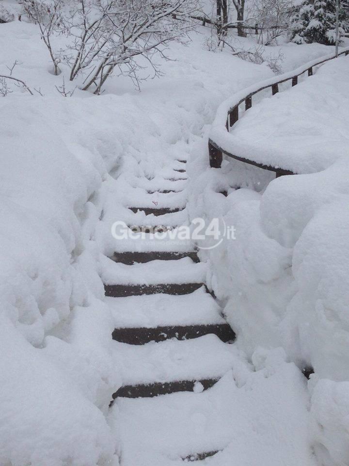 Nevicata in val d'Aveto