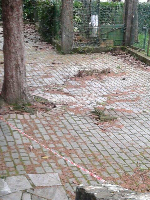 pavimentazione scuola delle piane a rapallo