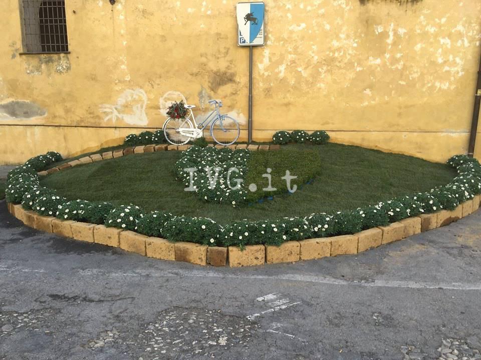 Fior d'Albenga, in piazza Trincheri l'aiuola del Rione di Sant'Eulalia