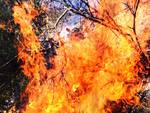 incendio andora