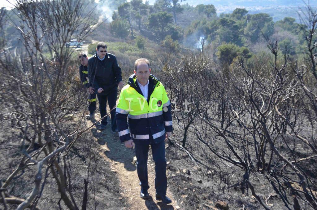 Incendio Andora, distrutta la pineta dei sentieri