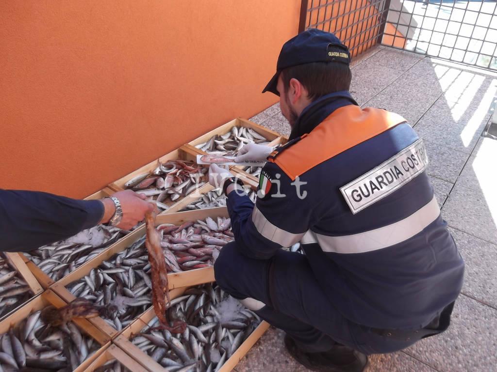 Ceriale, praticava la pesca a strascico con rete irregolare: pescatore multato dalla capitaneria
