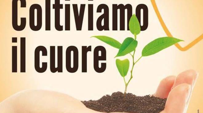 coltiviamo il cuore piante benefiche