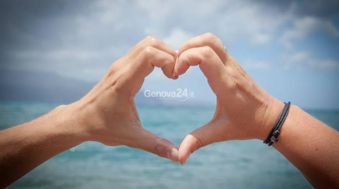 donazione, cuore