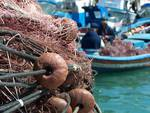 pescaturismo