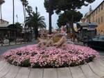 fiori albenga giro rosa