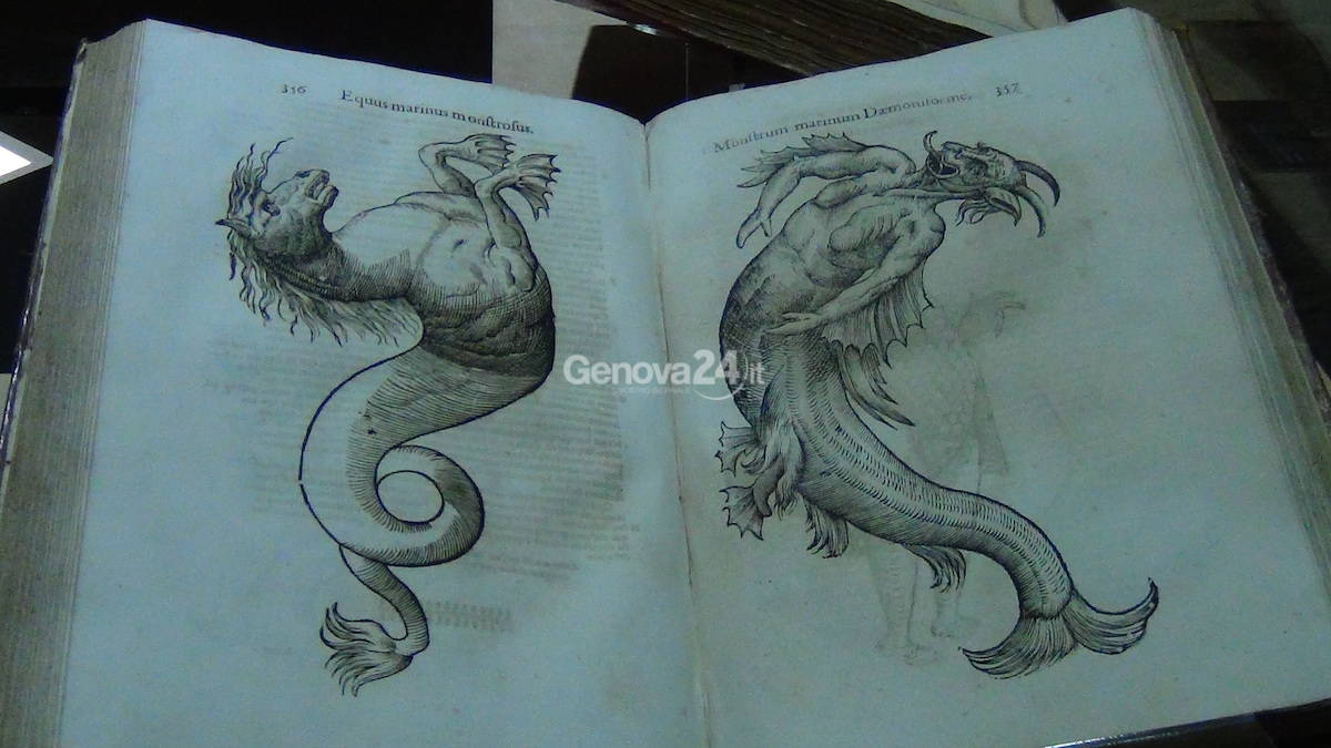 Mare Monstrum, la mostra al Galata tra paura e meraviglia