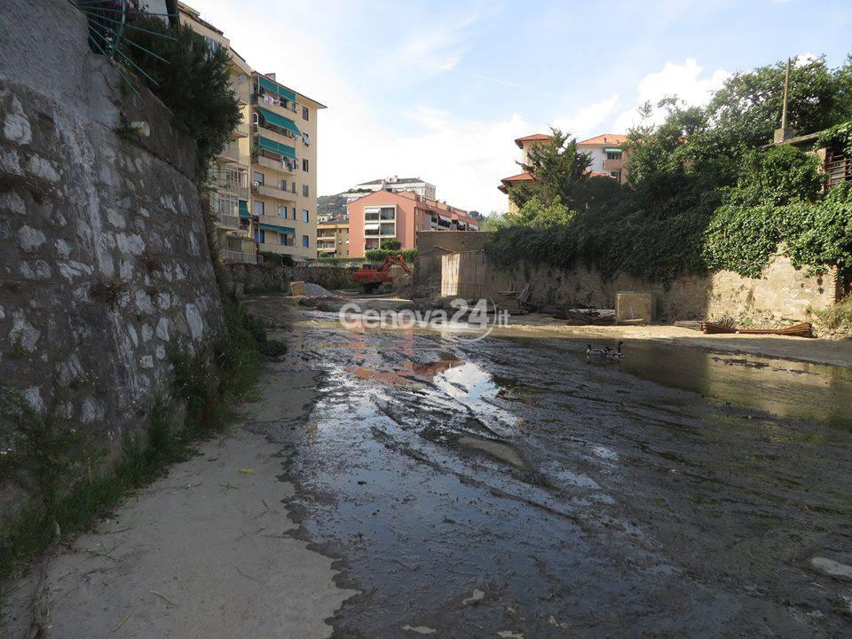 Torrente Rupinaro