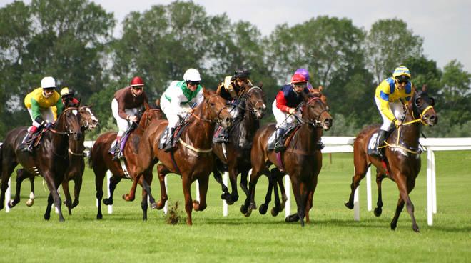 gioco cavalli