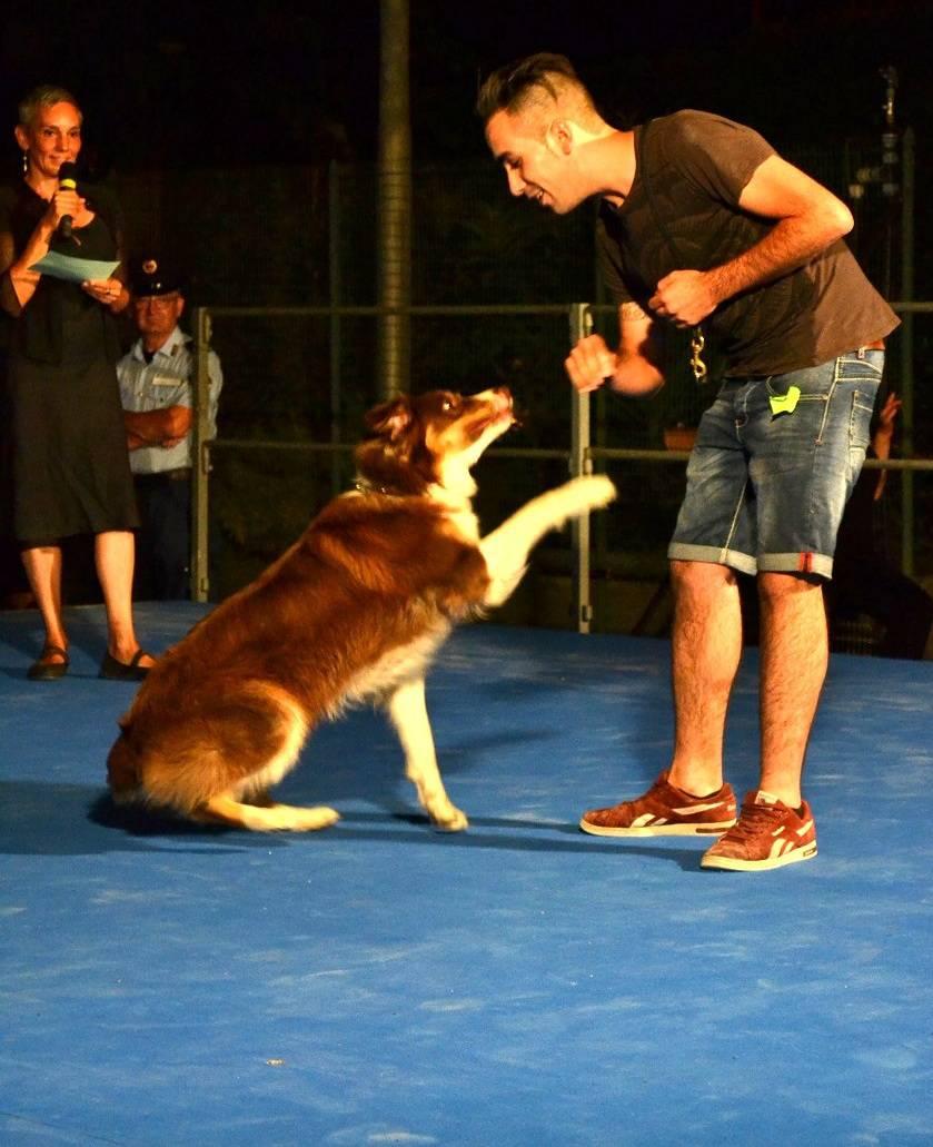 Savona, la 27° edizione del Concorso Cane Fantasia
