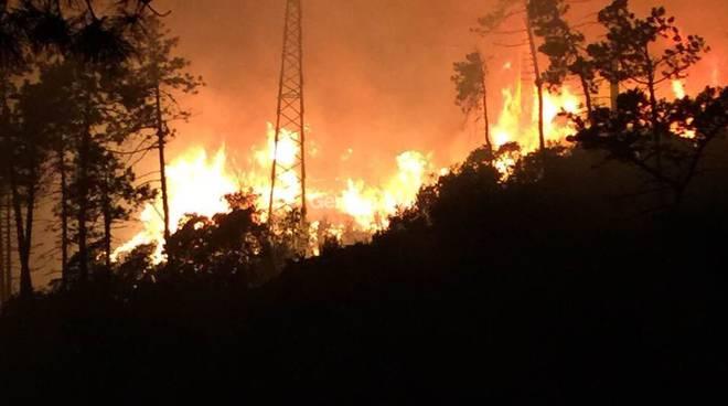 Incendio nei boschi tra Sestri Levante e Ne