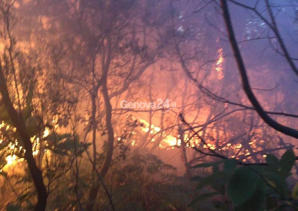 Incendio tra Sestri Levante e Ne