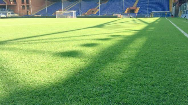 stadio ferraris (foto da U.C. Sampdoria)
