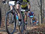 Gara di mountain bike
