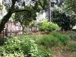 parco villa zanelli
