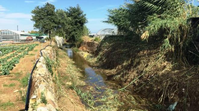 pulizia rio carenda