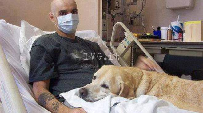 cane paziente pet terapy