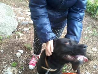 Athena, il cane